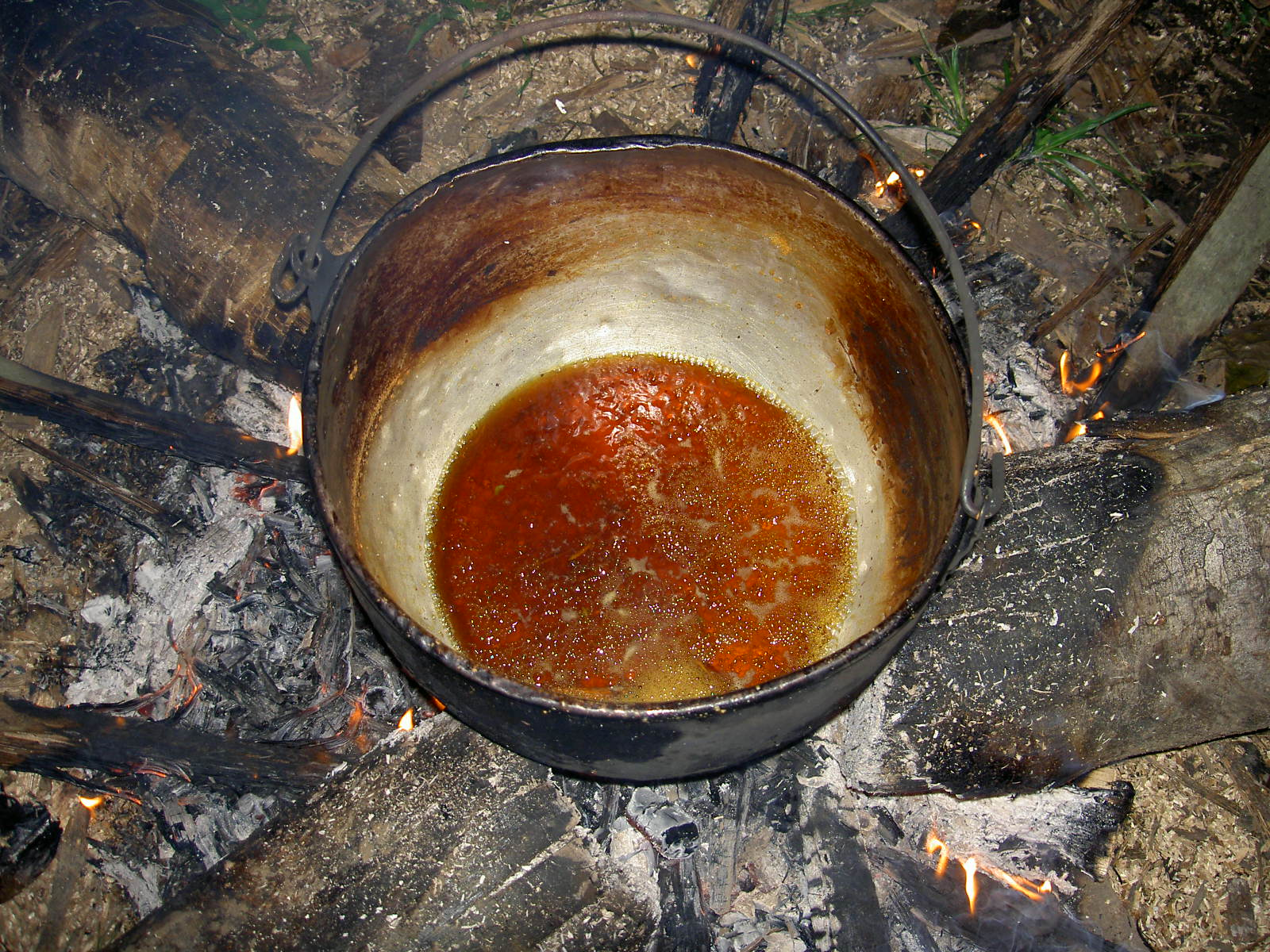 ayahuasca_preparation
